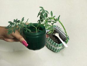 Maria Natureza: dicas para reutilizar os potinhos