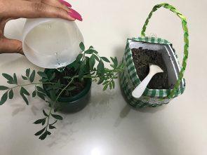 Dicas Reutilização do potinho Maria Natureza Festival das Flores Eva Lima 6 295x221 - Maria Natureza: dicas para reutilizar os potinhos